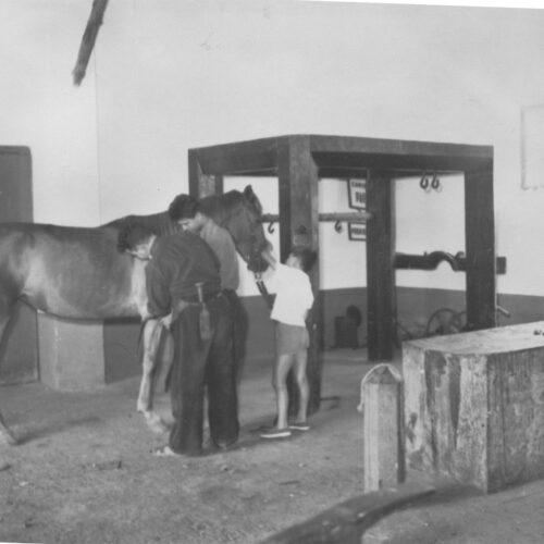 Herrería Morante, años 60